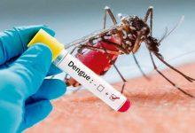 Photo of Son 36 los casos de dengue confirmados en la provincia
