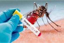 Photo of En una semana se duplicaron los casos de dengue en la provincia