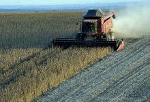 Photo of El sector agroexportador liquidó en abril 1.500 millones de dólares
