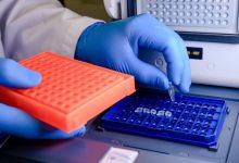 Photo of No se registraron nuevos casos de coronavirus en la provincia