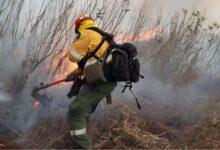 Photo of Dieron por finalizado el operativo para controlar los incendios