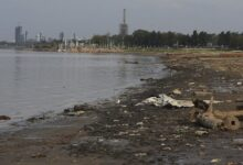 Photo of El río Paraná se mantiene cerca de su menor caudal histórico