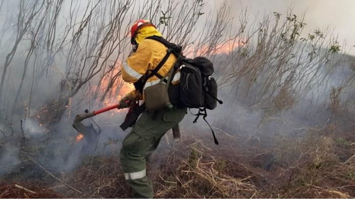 Photo of El 80 por ciento de los rosarinos dijo que las quemas los afecta personalmente