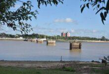 Photo of La bajante histórica del río Paraná es la principal causa de mortandad de peces