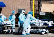 Photo of Coronavirus: se registraron más de 5 mil nuevos contagios y 212 muertes en el país