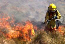 Photo of Tres provincias informaron incendios forestales activos