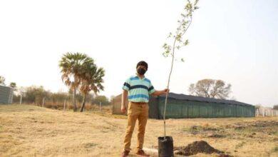 """Photo of El Gobierno plantó más de 5 mil árboles para """"luchar contra el cambio climático"""""""