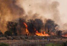 Photo of Se incendiaron más de 19 mil hectáreas en la provincia durante el 2020