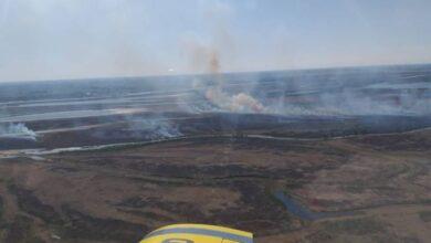 Photo of Apagaron incendios en las islas al sur de Rosario pero persisten focos en Santa Fe