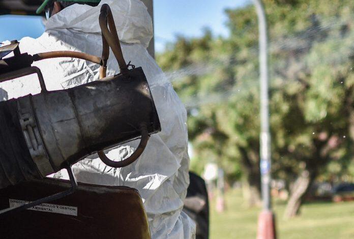 Photo of Comenzaron las tareas de fumigación con el aumento de las temperaturas